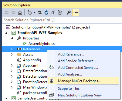 Open Nuget Package Manager